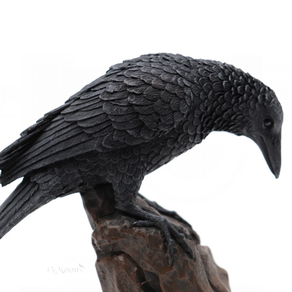 Looking Down Raven Statue